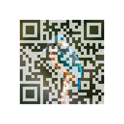 Fig. 2: QR Code with a Photo in the Background